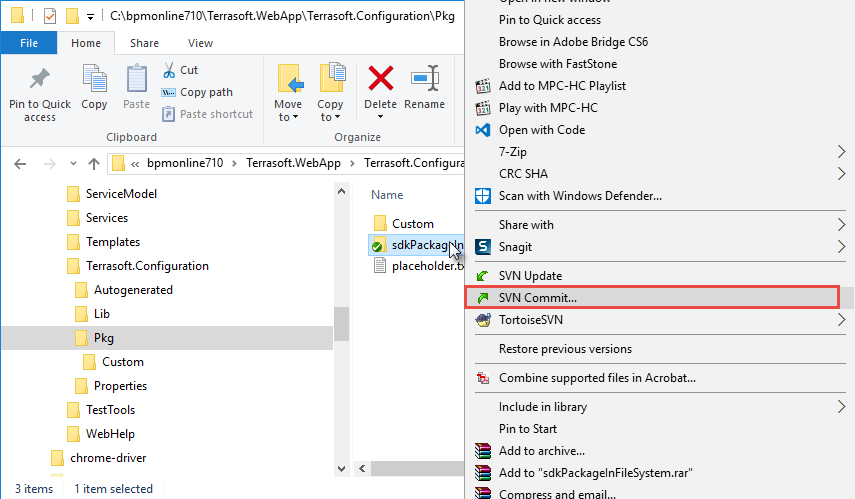 Creating a package in the file system development mode | bpm'online